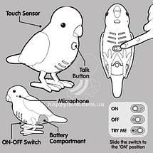 Интерактивная игрушка «Little Live Pets» (28019) птичка нахальный Чарли (Cheeky Charlie), фото 2
