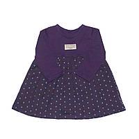 Платье фиолетовое в горошек Andriana Kids 6,9,12 мес