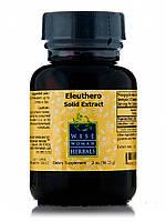 Eleuthero Solid Extract, 2 oz (56.25 Grams), фото 1