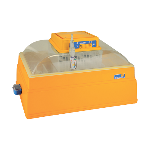 Novital Covatutto 54 инкубатор с ручным переворотом яиц