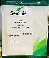 Форталеза F1 Seminis 2500 семян цветная