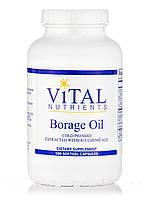 Borage Oil, 180 Softgel Capsules, фото 1