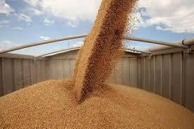 Ответственный шаг - модернизация зернохранилищ.