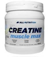 Креатин - Creatine - All Nutrition - 500 гр