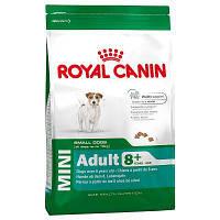 Роял Канин Мини эдалт Royal Canin Mini Adult 8+ сухой корм для собак мелких пород старше 8 лет 2 кг