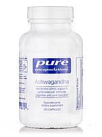 Ашваганда, Ashwagandha, Pure Encapsulations, 120 Капсул, фото 1