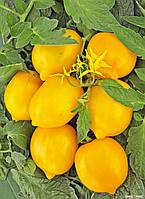 Насіння томату Чудо світу жовтий (високорослий), 0,2 г