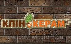 Клинкерный кирпич Керамейя Украина, фото 2