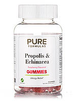 Propolis & Echinacea Gummies, Raspberry Flavored, 60 Gummies