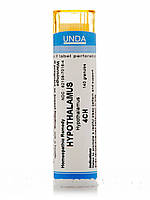 Hypothalamus 4CH, 140 Granules (5.5g)