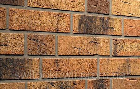 Клинкерный кирпич Feldhaus Klinker Германия, фото 2