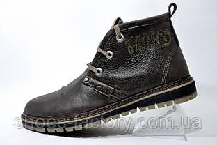 Зимние ботинки Clarks, кожа (Польша) Brown