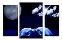 Модульная картина дельфины
