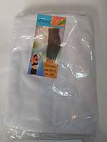 Панталоны 503 начес, размеры 46-50 (в упаковке 6 шт)