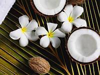 Масло кокоса рафинированное 0,5 кг