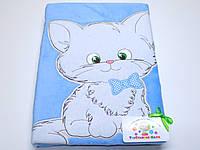 Детский флисовый плед ( голубой с аппликацией котик)