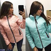 Куртка короткая мод259