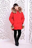Теплая куртка «Вика-дочка» на девочку 8-12 лет (2017/18, р. 34-40/128-146, натур енот) ТМ MANIFIK Красный