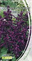 Семена сальвии Блестящая фиолетовая, 0.2г, Семена Украины