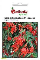 Семена бегонии ампельной Копакабана F1, 5шт, Cerny, Чехия, Садиба Центр