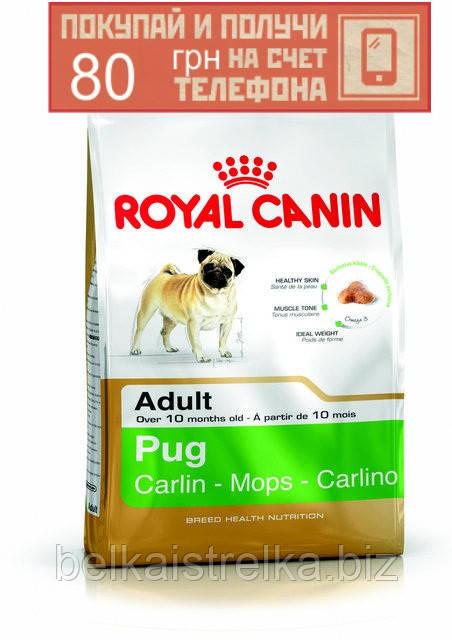 Корм Royal Canin Pug Adult, для собак породы Мопс от 10 месяцев, 3кг + ПОДАРОК 80 грн на мобильный