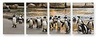 Модульная картина пингвины и камни