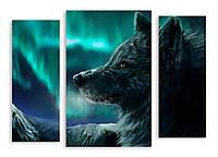 Модульная картина большой волк