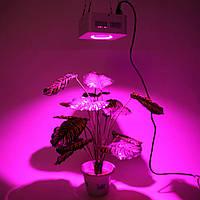 Фитопанель для растений 200W COB (1LEDx200W) белый цвет