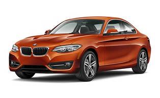 Коврики в салон для BMW 2-SERIES