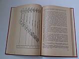 """Г.Давыдов """"Преподавание Конституции СССР в школе"""". 1959 год, фото 5"""