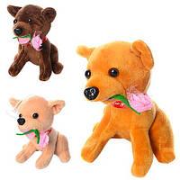 Мягкая игрушка MP 1360 (72шт) собачка, размер маленький, присоска, с цветком, 14см