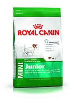 Корм для собак Royal Canin Mini Junior 8 кг для щенков мелких пород от 2 до 10 месяцев