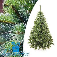 Искусственная новогодняя елка ЛЕСНАЯ с белыми кончиками 250 см, фото 1