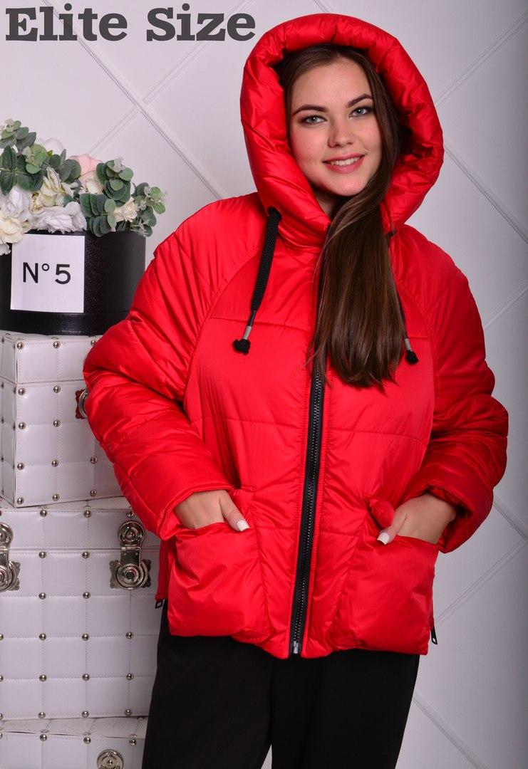 Зимняя курточка укороченная с капюшоном.