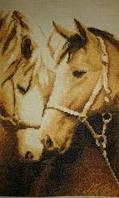 Картина Верность (Лошади) вышивка крестом
