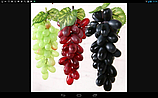 Штучний виноград