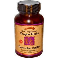 Dragon Herbs, Протектор 2000, 500 мг, 100 капсул (Discontinued Item), DRA-00193