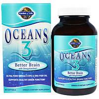 Garden of Life, Oceans 3, улучшение мозговой деятельности с Омега-ксантином, 90 желатиновых капсул, GOL-11383