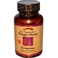 Dragon Herbs, Cordyceps, 500 mg, 100 Vegetarian Capsules, DRA-00506