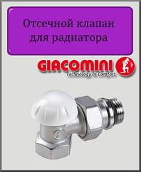 """Відсікаючий клапан 3/4"""" Giacomini кутовий"""