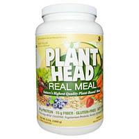 Genceutic Naturals, Plant Head, дополнительный источник растительного белка, клетчатки и аминокислот,шоколадный вкус, 2.3 фунта (1050 г), GNT-26892