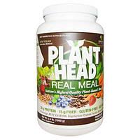 Genceutic Naturals, Plant Head, дополнительный источник растительного белка, клетчатки и аминокислот, ванильный вкус, 2.3 фунта (1050 г), GNT-26887