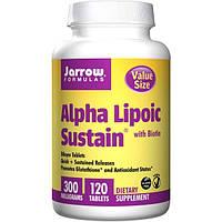 Jarrow Formulas, Выдержка альфа-липоевой кислоты с биотином, 300 мг, 120 таблеток, JRW-20036