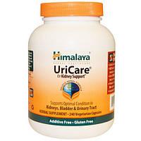 Himalaya Herbal Healthcare, UriCare, для поддержки почек, 240 вегетарианских капсул, HIM-00211