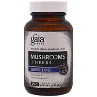 Gaia Herbs, Грибы + травы, Зашита печени, 60 вегетарианских капсул, GAI-15014