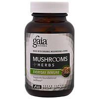 Gaia Herbs, Грибы + травы, Иммунитет каждый день, 60 вегетарианских капсул, GAI-15015