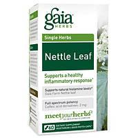 Gaia Herbs, Лист крапивы, 60 жидких фито-капсул на растительной основе, GAI-39930