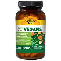 Country Life, Поддержка для вегетарианцев, веганские мультивитамины и минералы, 120 растительных капсул, CLF-08107