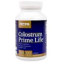 Jarrow Formulas, Молозиво Prime Life, 500 мг, 120 капсул, JRW-21010