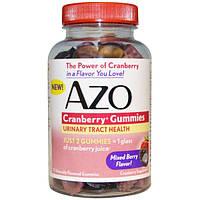 Azo, Клюквенные жевательные конфеты, Смешанный ягодный вкус, 72 штуки, AZO-76010